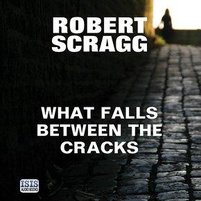 What Falls Between the Cracks thumbnail
