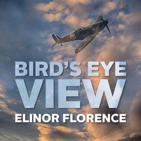 Bird's Eye View thumbnail