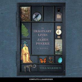 The Imaginary Lives of James P?neke thumbnail