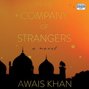 In the Company of Strangers thumbnail