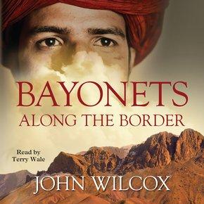Bayonets Along The Border thumbnail