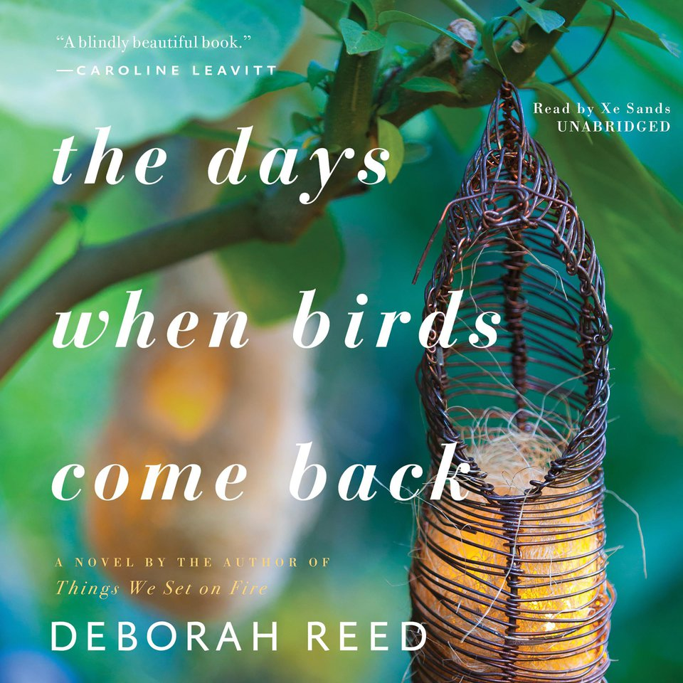 Days When Birds Come Back