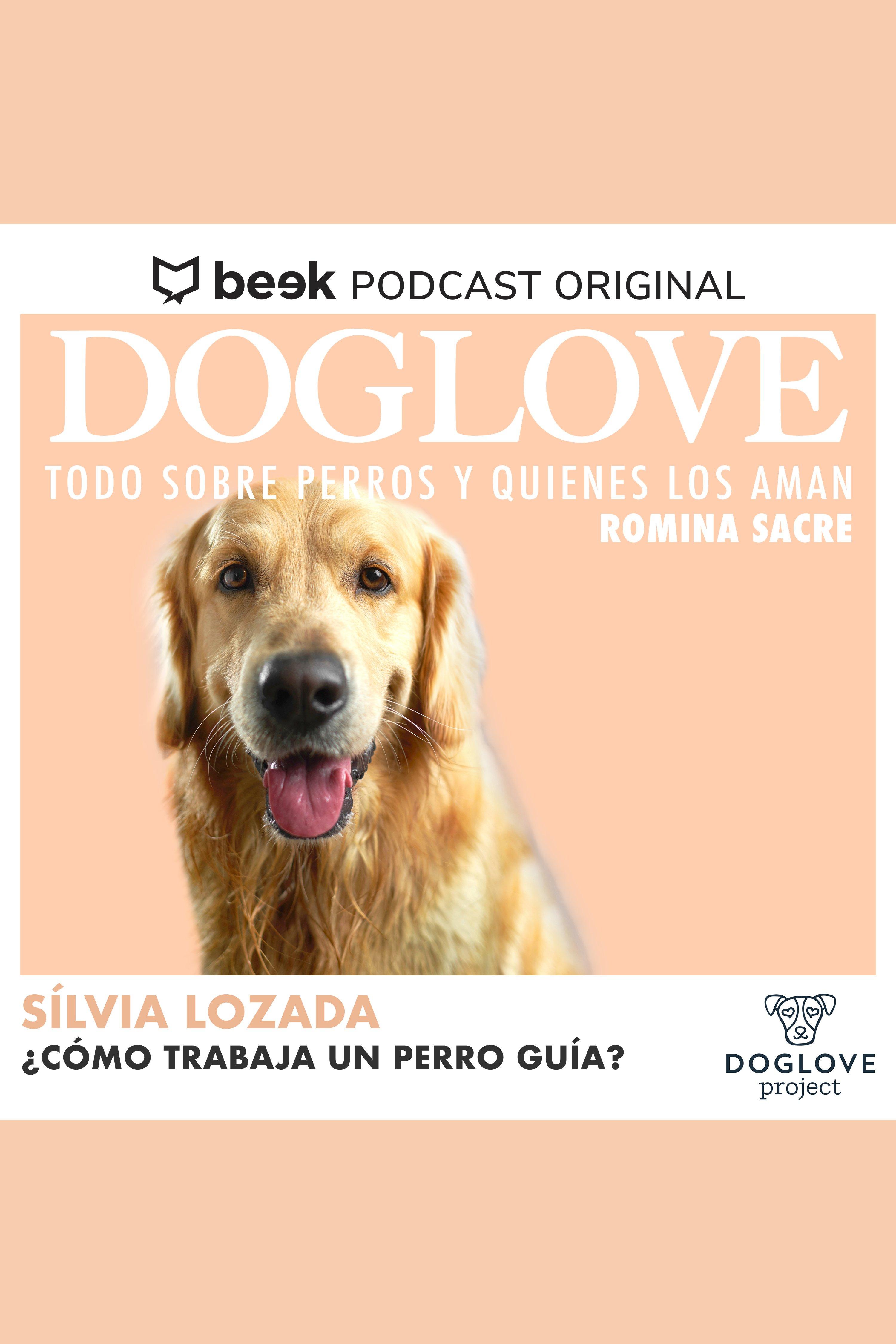 Esta es la portada del audiolibro ¿Cómo trabaja un perro guía? Con Silvia Lozada